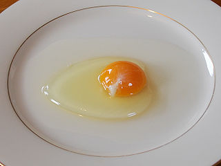 How to make a poached egg