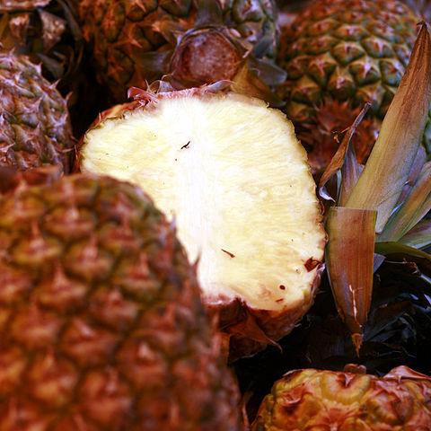 fruit liquefied